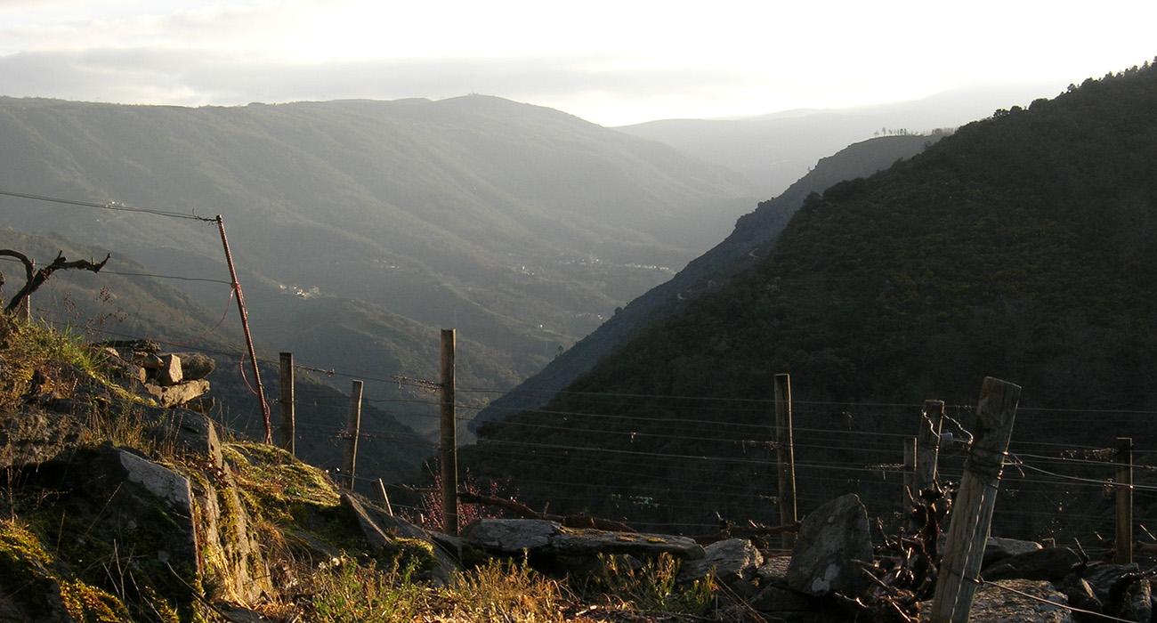 Valle de Sil IV