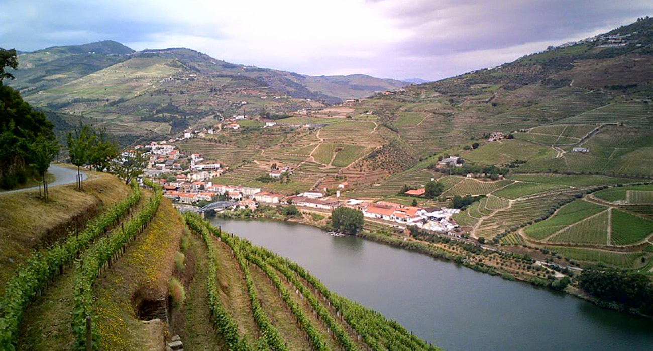pinsdaddy-thewineblog-the-douro-region-of-portugal-eighth